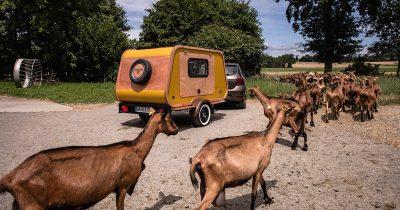 Carapate aventure, mini-caravane à la ferme